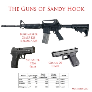 Guns of Sandy Hook