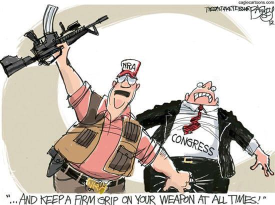 NRA-Grip-on-Congress
