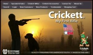Crickett my first rifle